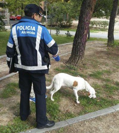 Policía Local Alcorcón campaña vigilancia perros peligrosos