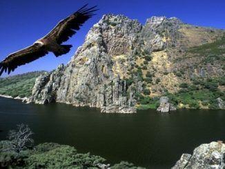 El Parque Nacional de Monfragüe
