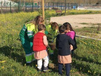 Colegios Getafe Norte - Plantación Árboles