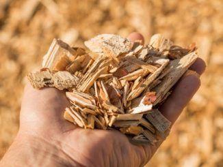 CAM Agrocomposta, el nuevo modelo de gestión de residuos de materia orgánica en la Comunidad