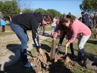 Un centenar de escolares han reforestado hoy una parcela en Fuenlabrada