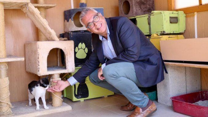 Carlos Izquierdo, consejero de Medio Ambiente y Ordenación del Territorio, presenta la campaña Vacaciones para todos, mi mascota siempre conmigo