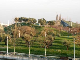 Parque Juan Carlos I de Madrid.