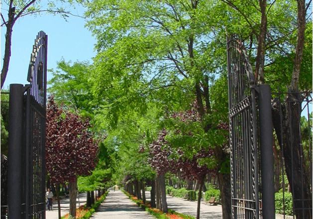 parque liana Mostoles