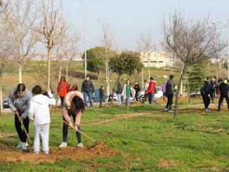 Más de 250 escolares de 10 centros educativos de Fuenlabrada participan hoy en una plantación de árboles
