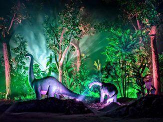 Dinosaurios de la exposición