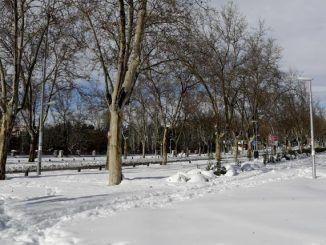 Vista de una de las avenidas de la Universidad Complutense totalmente cubierta de nieve este lunes.