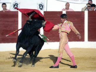 Un hombre en el ruedo con un toro